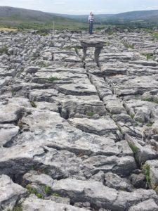 Burren in June